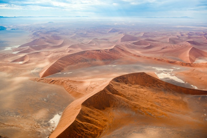British Ecological Society image of desert