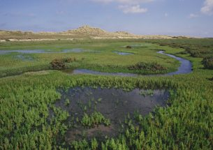 Becoming climate smart: putting natural environment science into adaptation plans