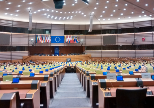 Policy in the European Parliament