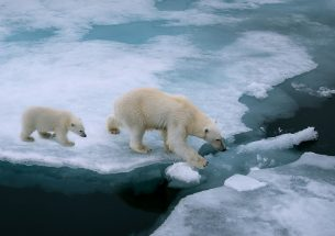 The Changing Arctic: An Environmental Audit Committee inquiry
