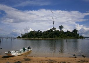 Experts warn against mega-dams in lowland tropical forests