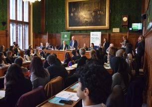 Voice of the Future 2019: environmental policy beyond Brexit?