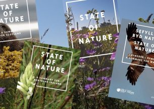 Reflections on the State of Nature report 2019
