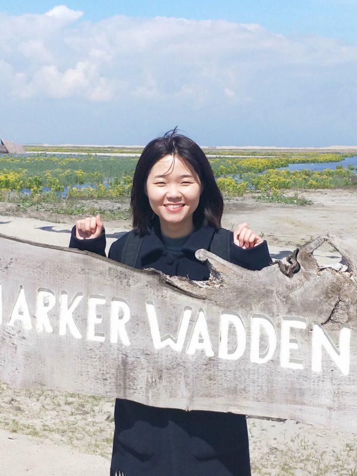 Haldane 2019 - Yingying Wang
