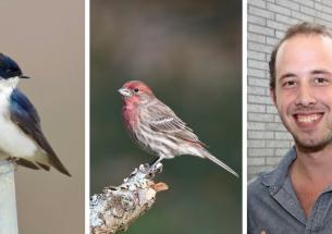 Daniel Becker wins the British Ecological Society's Sidnie Manton Award