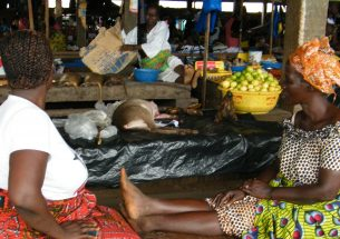 Clear strategies needed to reduce bushmeat hunting