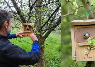 Installing bird nest boxes improves pest control in cider apple crops