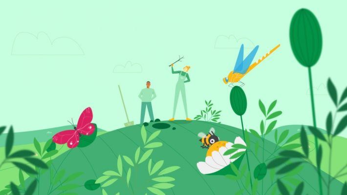 Nature-based solutions: Planting trees