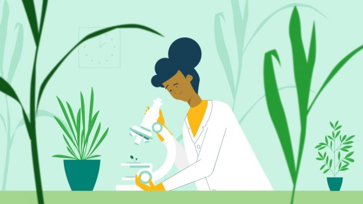 Nature-based solutions: Scientist looking at microscope surrounded by plants