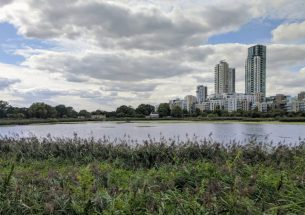 New report highlights the benefits of bringing nature into our cities