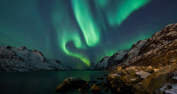British Ecological Society image of the northern lights