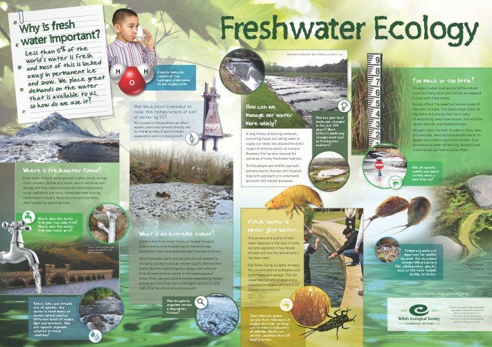 Freshwater Ecology Wallchart