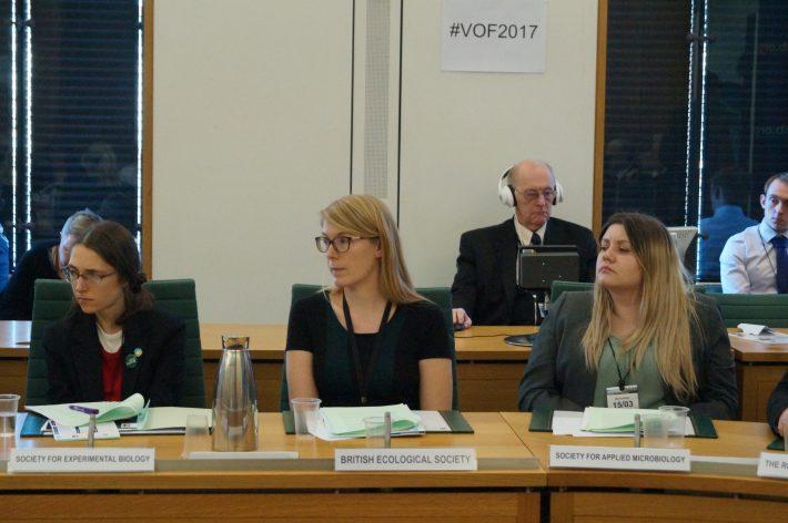 Daniella Rabaiotti on the panel at Voice of the Future 2017