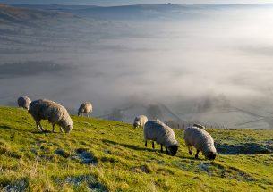 Natural Capital Committee sets ambitious goals for Environment Plan