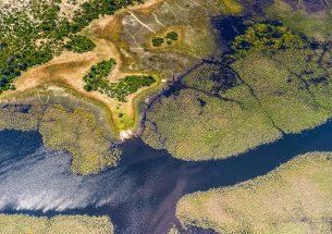 Macroecology SIG: Crossing the Palaeontological-Ecological Gap (CPEG)