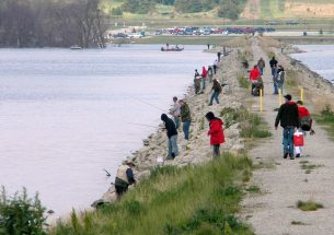 Researchers: Fish and anglers should inform water management decisions