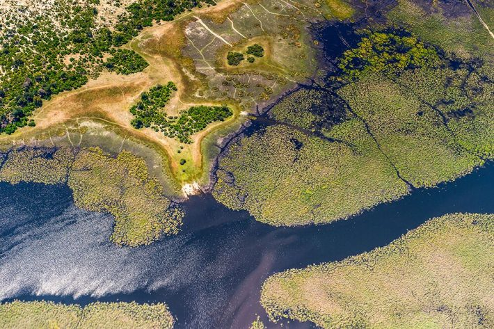 A top-down view of a body of water next to a land mass with scatterings of shrubs and trees
