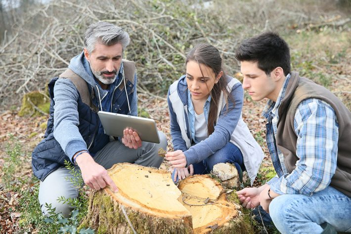 A university teacher sat by and pointing at a tree stump with students