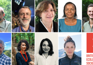 Announcing the 2019 British Ecological Society award winners