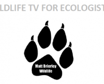 Pitching your ecology to broadcast media