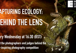 Capturing Ecology: Behind the Lens