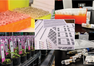 Sample management for biologists