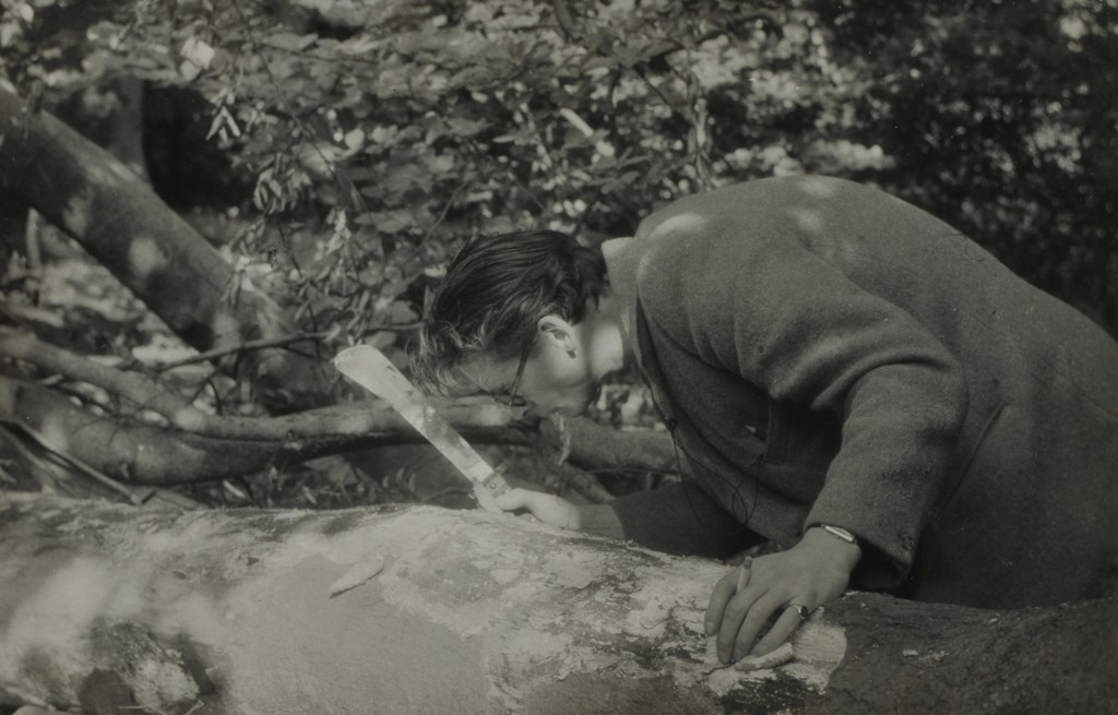 Hunting beetles with machete and cigarette 1952. Reproduced with the permission of the Department of Zoology, University of Oxford.